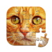 Unlimited Puzzles – free jigsaw for kids and adult  2.21.0 APK MOD (Unlimited Money)