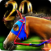iHorse The Horse Racing Arcade Game APK MOD Unlimited Money